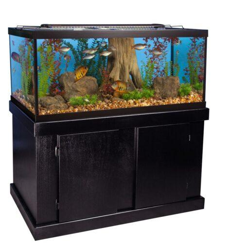 Majesty Aquarium Stand